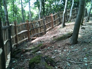A deer fence, built with sweet chestnut posts and rails and oak pailings from the local sawmill.